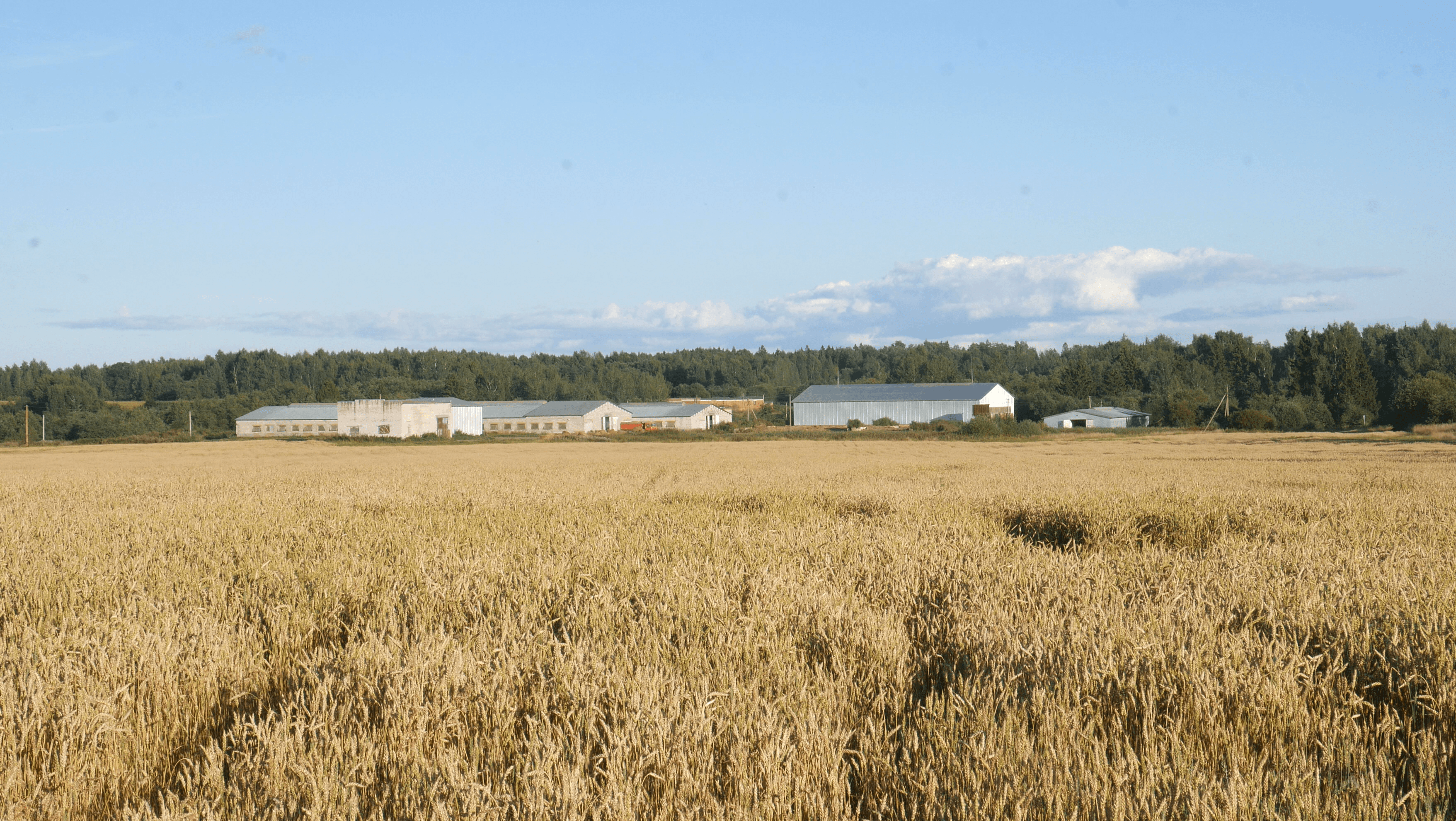 How to reduce greenhouse gas emissions on farm - Smart4Agro